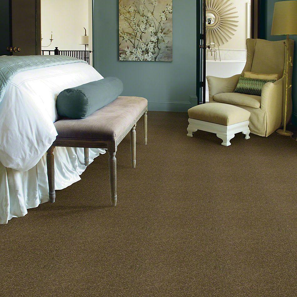 Shaw Floors SFA Loyal Beauty I Summerhouse 00301_EA162