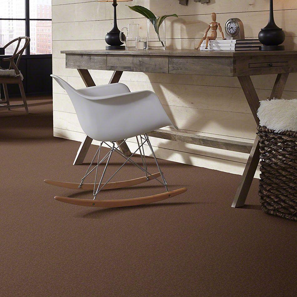 Shaw Floors Shaw Flooring Gallery Truly Modern I 12′ Mojave 00301_Q263G