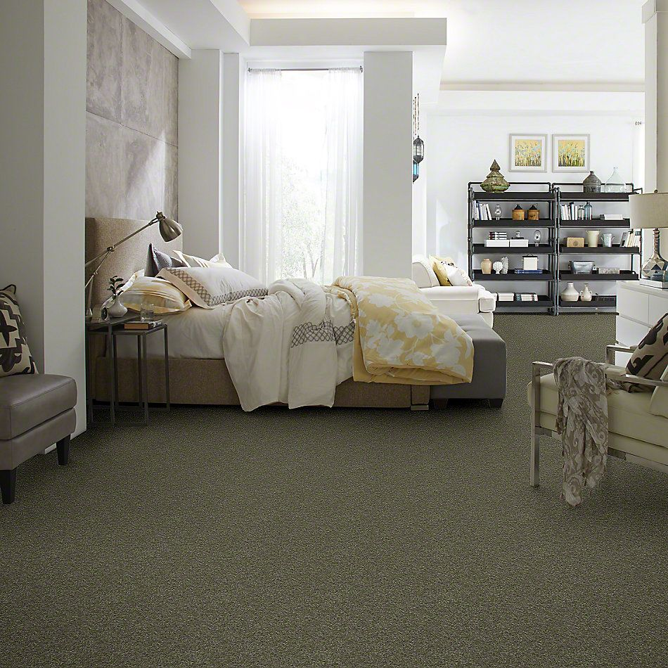 Shaw Floors Clearly Chic Bright Idea III Olive Yard 00301_E0506
