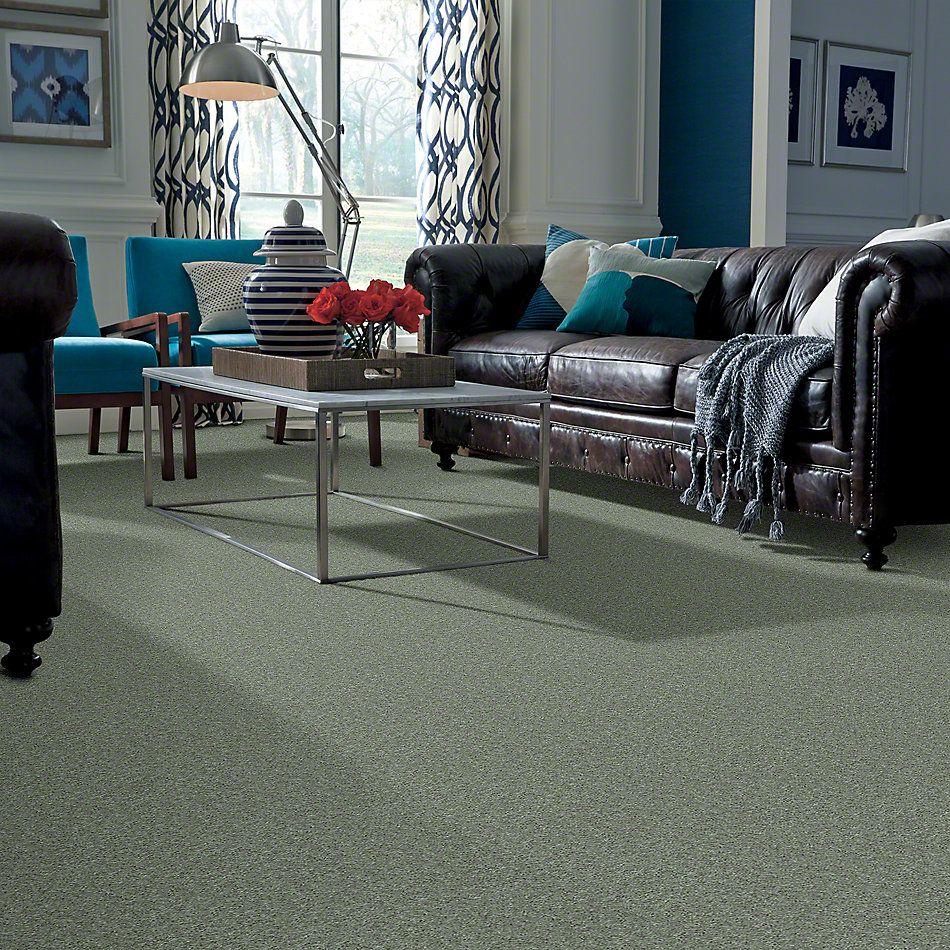 Shaw Floors Keep Me II Organic Leaf 00301_E0697