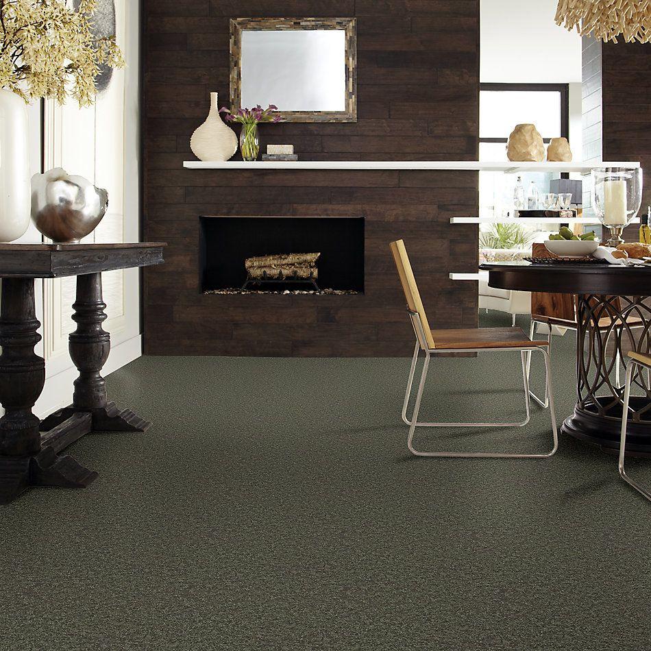 Shaw Floors Value Collections All Star Weekend I 12 Net Garden Grove 00301_E0792