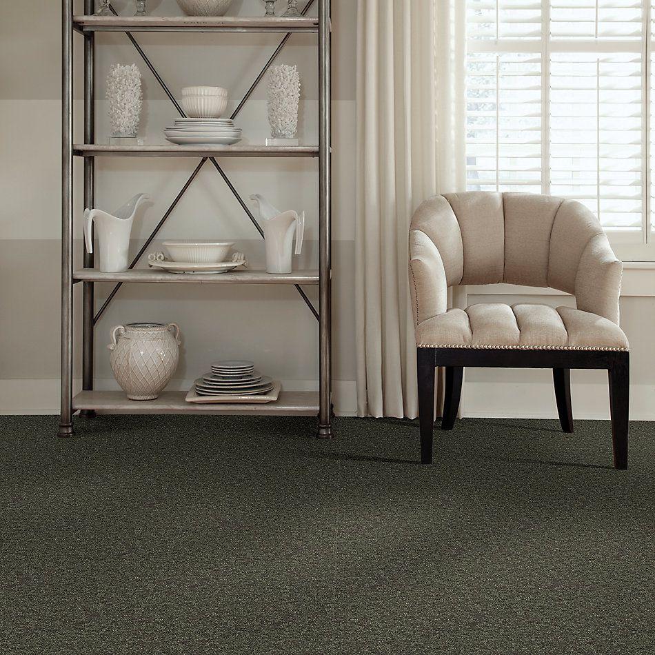 Shaw Floors Value Collections Full Court 15′ Net Garden Grove 00301_E9270