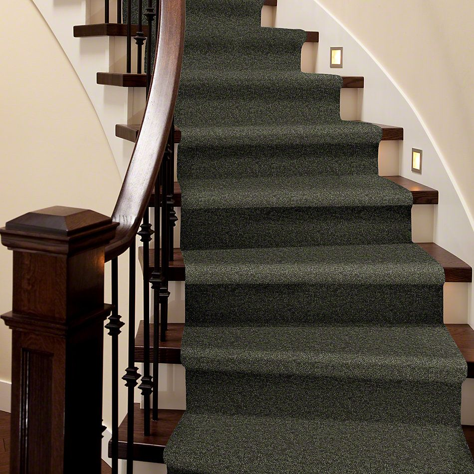 Shaw Floors SFA Drexel Hill II 15′ Garden Grove 00301_EA052