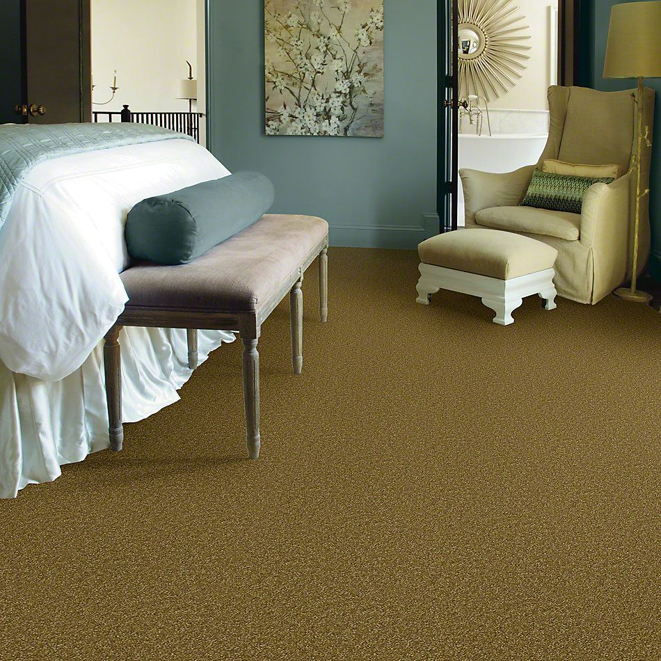 Shaw Floors Shaw Flooring Gallery Invite Possibility I 12 Sprout 00301_Q314G