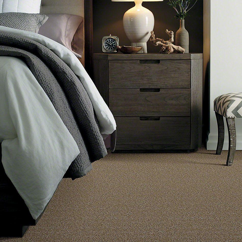Shaw Floors SFA Garden Lake Desert Palm 00301_Q4208