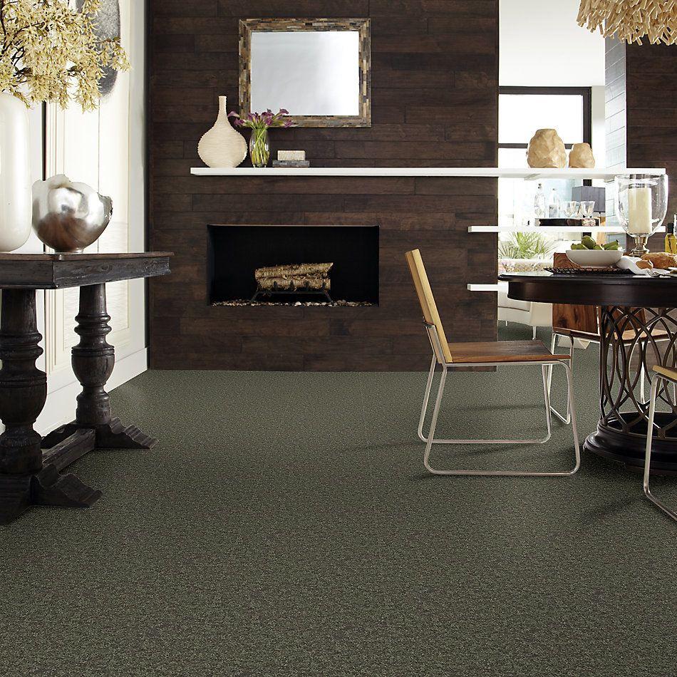 Shaw Floors Roll Special Xv866 Garden Grove 00301_XV866