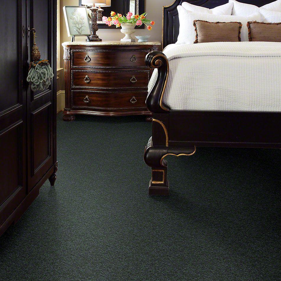 Shaw Floors SFA Vivid Colors II Emerald Coast 00302_0C161