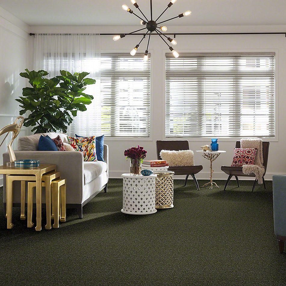 Shaw Floors Shaw Flooring Gallery Highland Cove I 12 Sage Leaf 00302_5219G