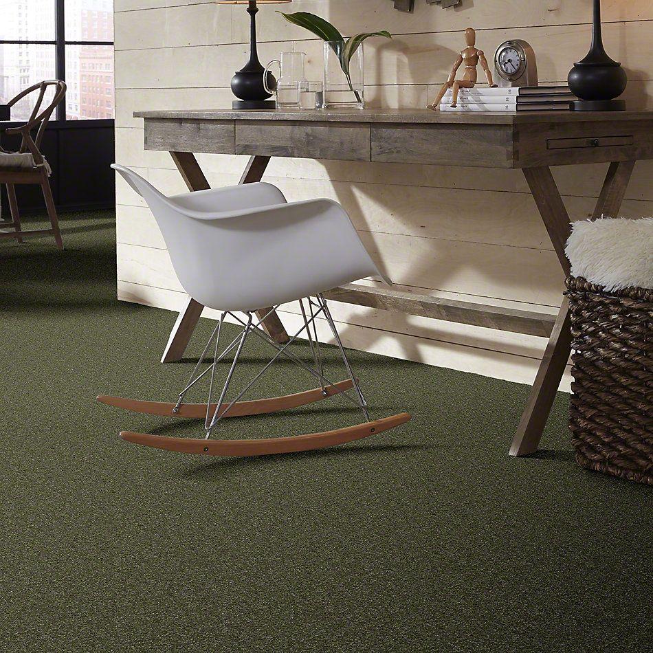 Shaw Floors Shaw Flooring Gallery Highland Cove II 12 Sage Leaf 00302_5221G