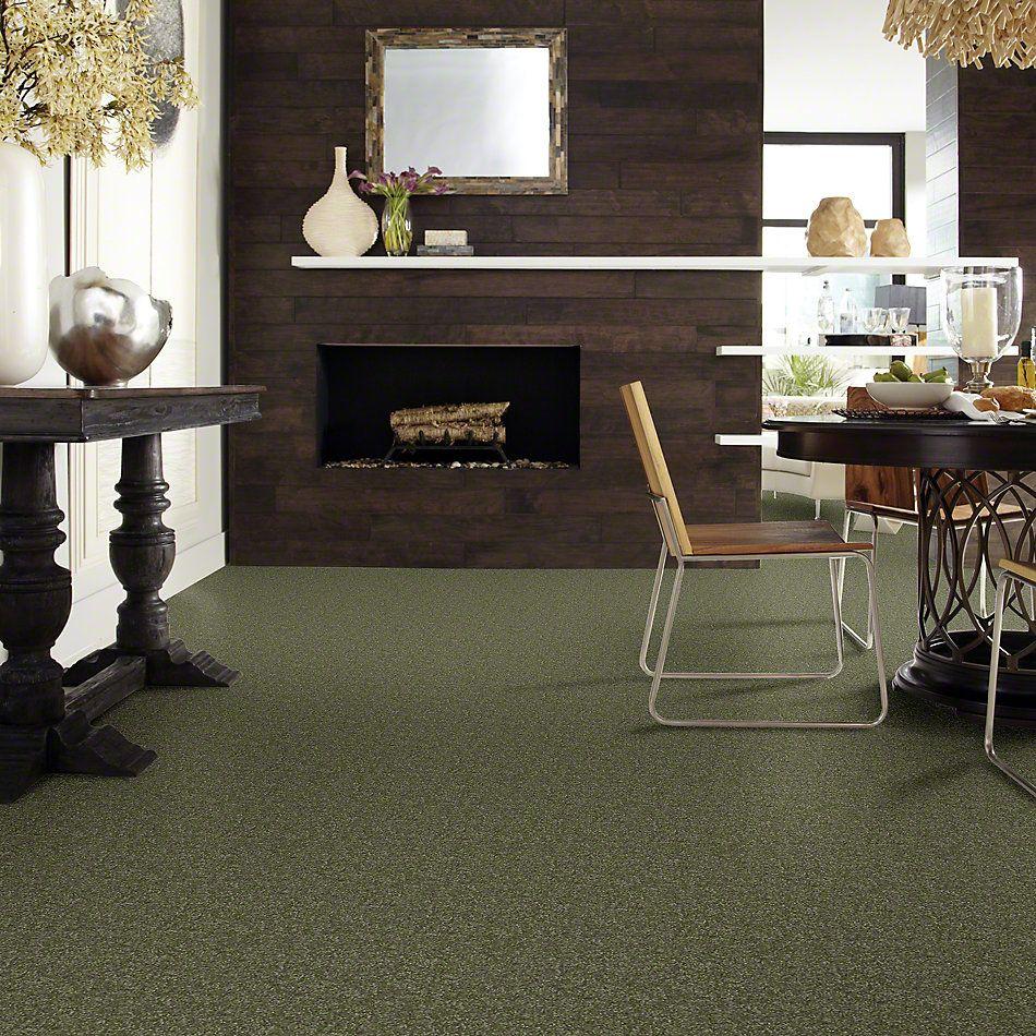 Shaw Floors Shaw Flooring Gallery Highland Cove II 15 Sage Leaf 00302_5222G
