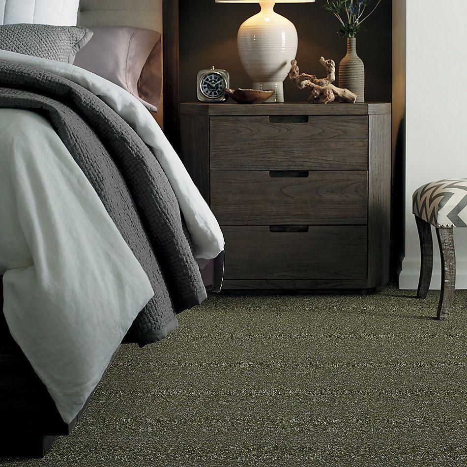Shaw Floors Shaw Floor Studio Porto Veneri I 12′ Sage Leaf 00302_52U54