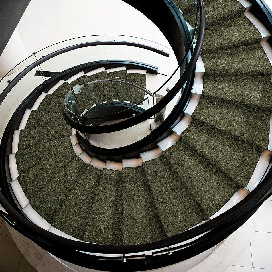 Shaw Floors Shaw Floor Studio Porto Veneri II 12′ Sage Leaf 00302_52U56