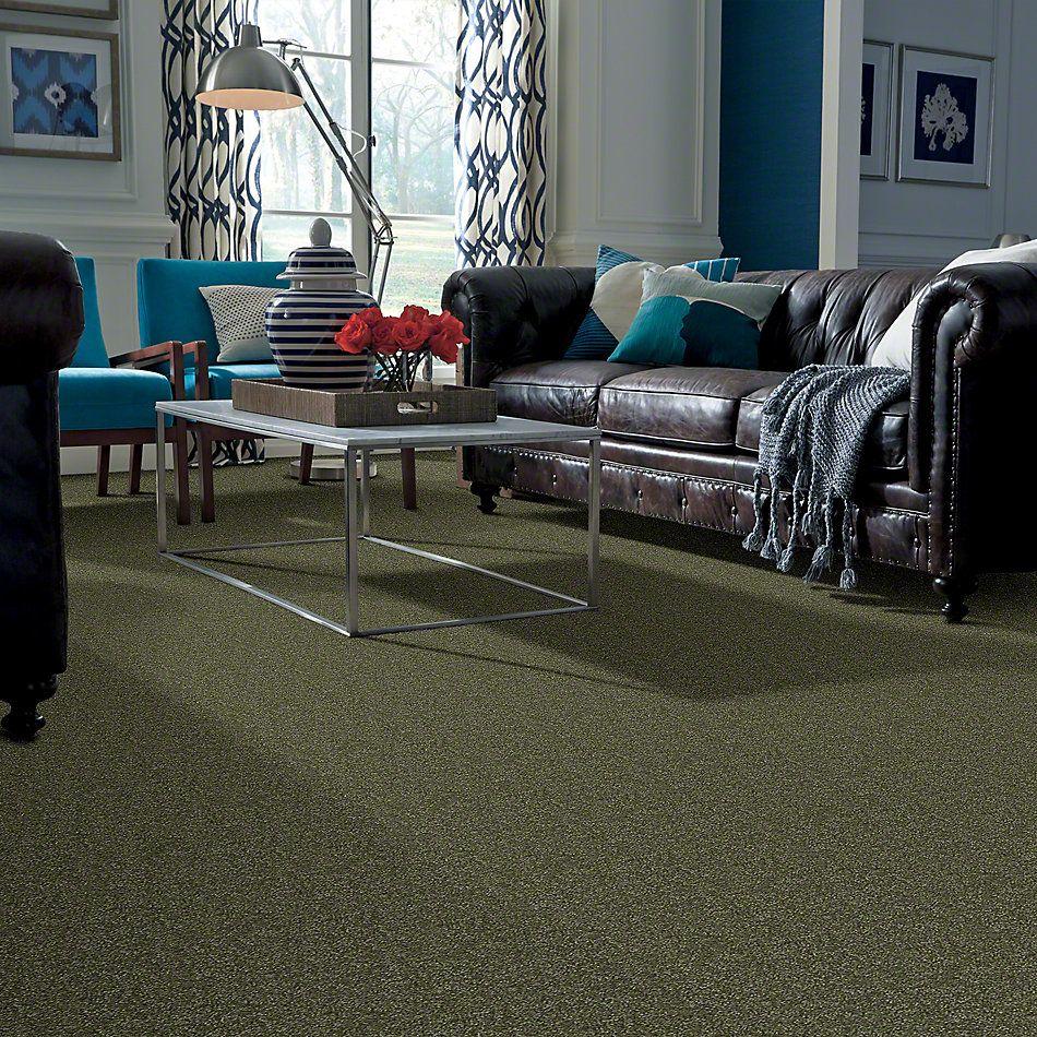 Shaw Floors Shaw Design Center Different Times I 12 Sage Leaf 00302_5C492