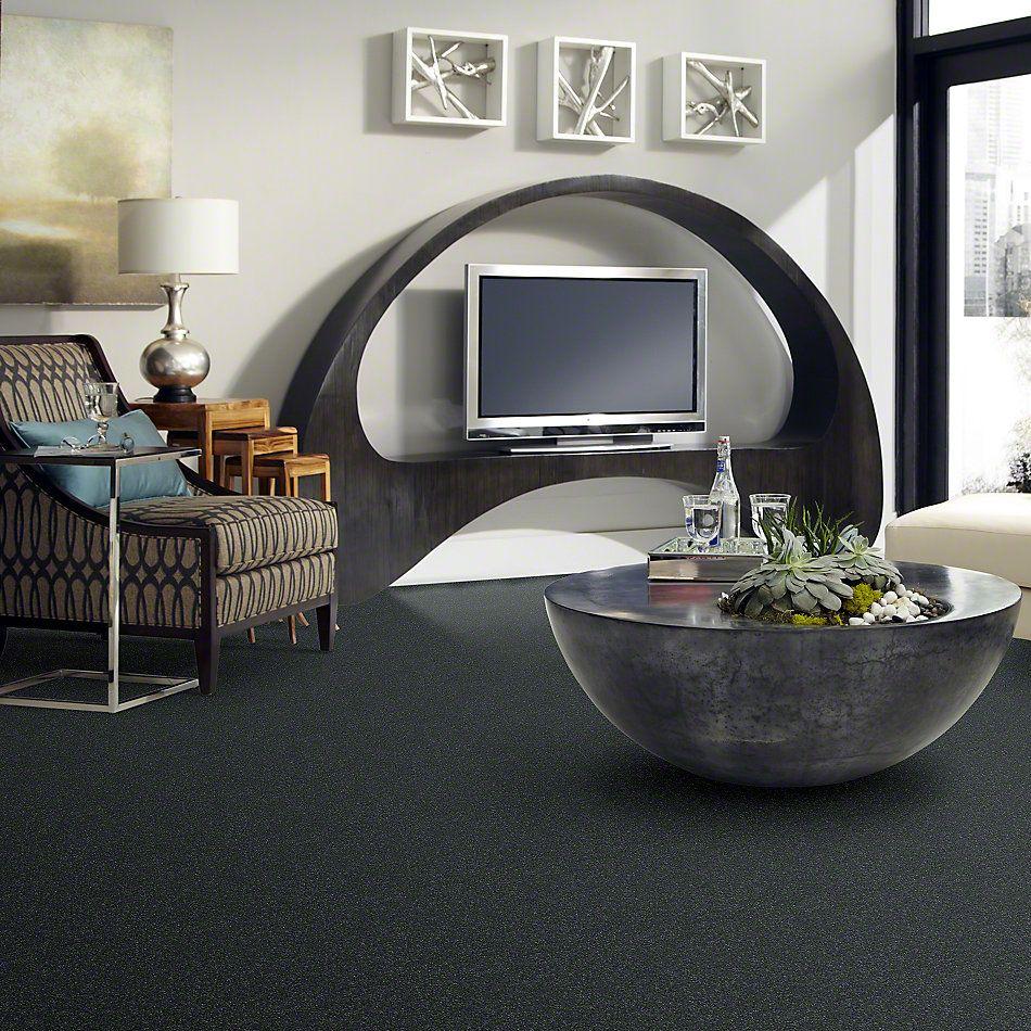 Shaw Floors Shaw Design Center Beautifully Simple II 15′ Aspen 00302_5C752