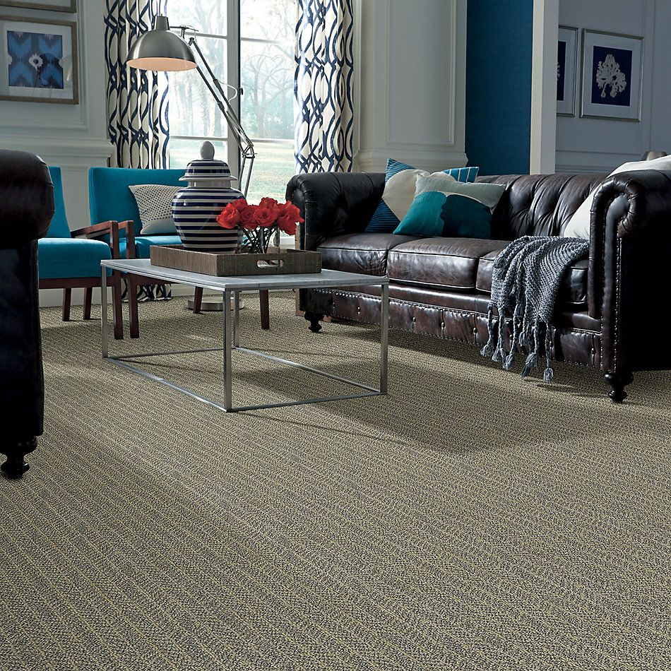 Shaw Floors Creative Elegance (floors To Go) Goodwater Chameleon 00302_7B3J7