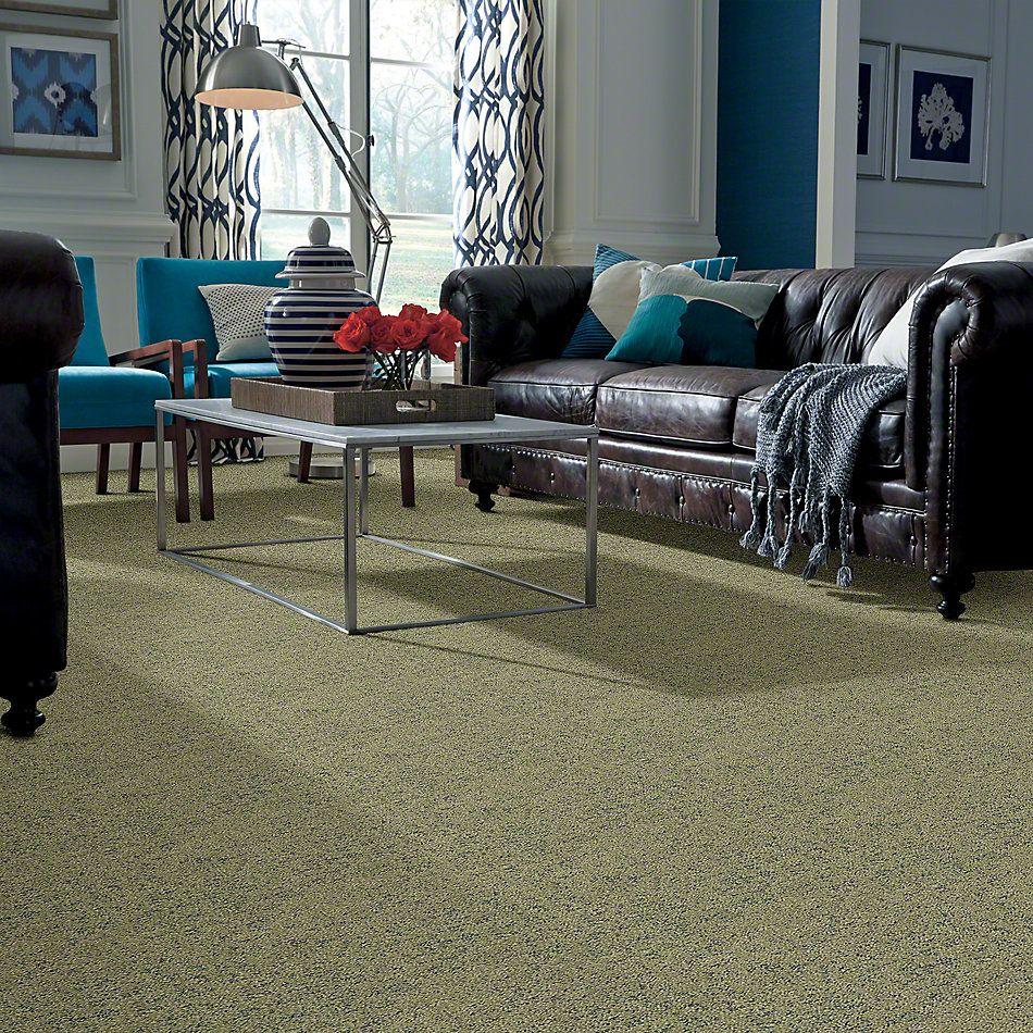 Shaw Floors Bellera Make Your Mark Chameleon 00302_E9649