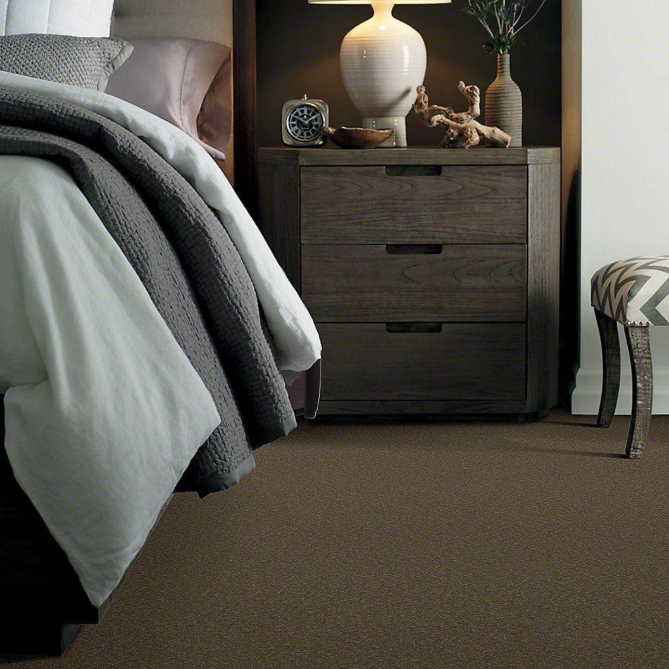 Shaw Floors Sandy Hollow I 12′ Green Tea 00302_Q4273