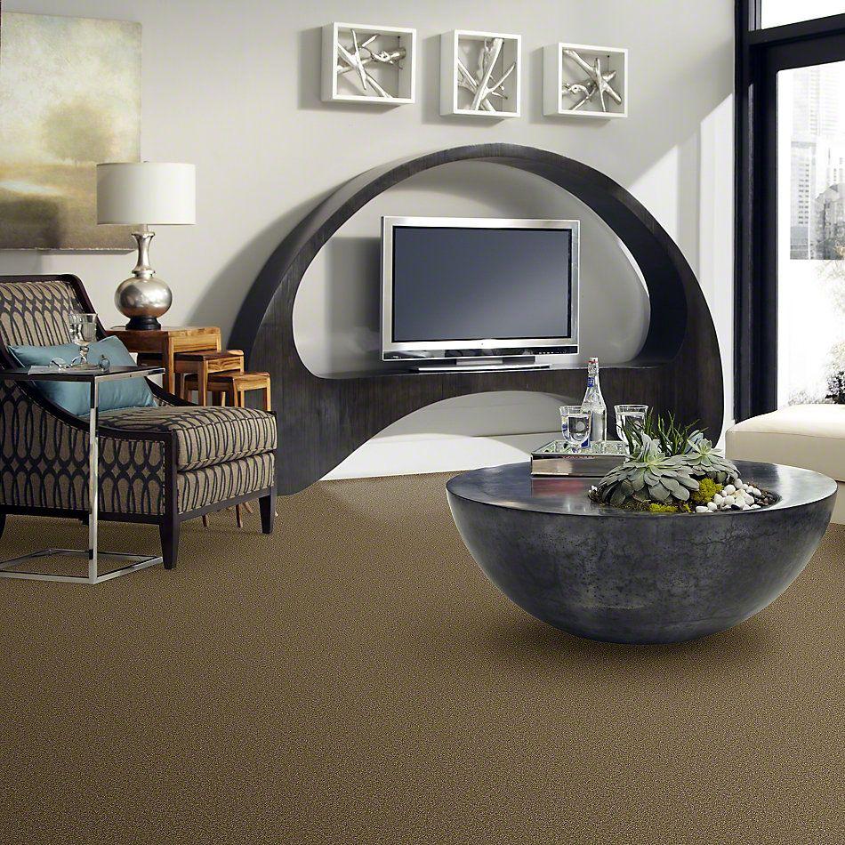 Shaw Floors Sandy Hollow III 12′ Green Tea 00302_Q4277