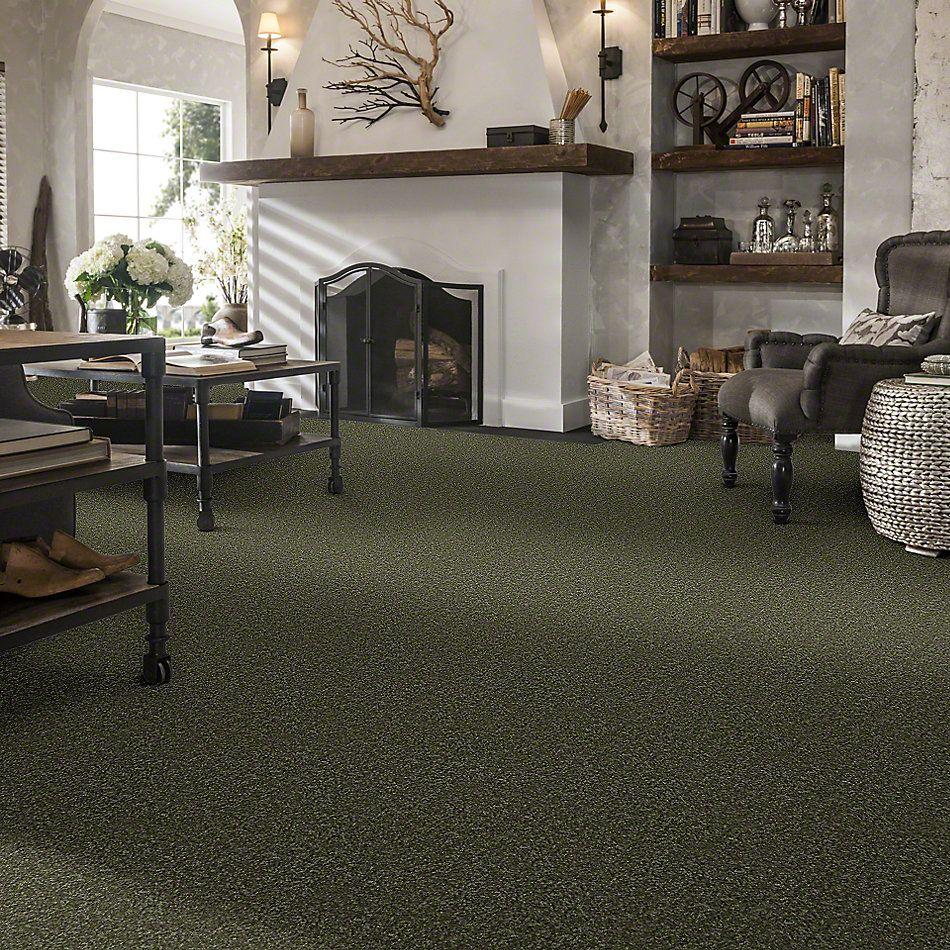 Shaw Floors SFA Versatile Design II Sage Leaf 00302_Q4689
