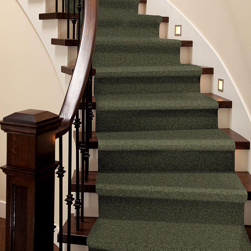 Shaw Floors Value Collections Passageway 3 12 Net Sage Leaf 00302_E9154