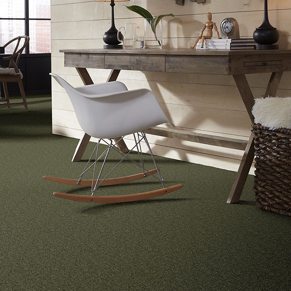 Shaw Floors Value Collections Passageway 3 Net Sage Leaf 00302_E9377