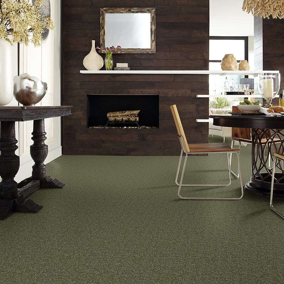 Shaw Floors Value Collections Passageway II 15 Net Sage Leaf 00302_E9621