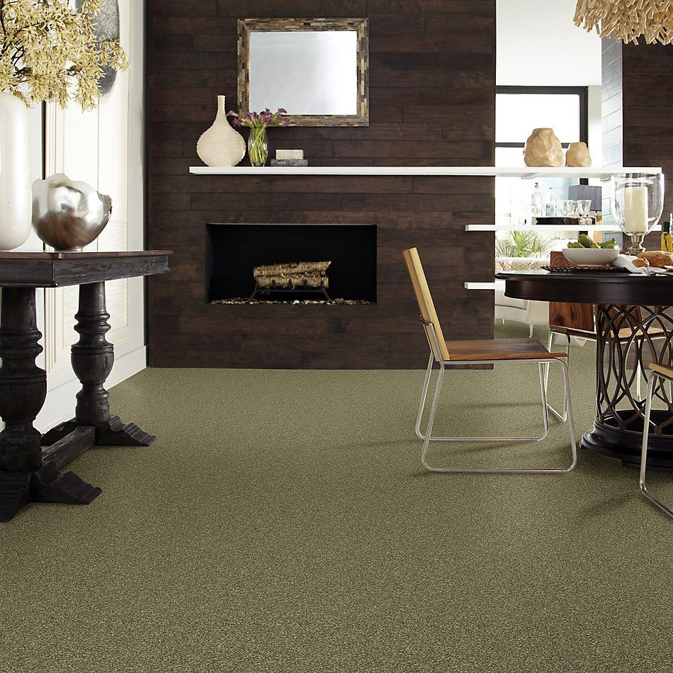 Shaw Floors Bellera Points Of Color II Net Chameleon 00302_E9786