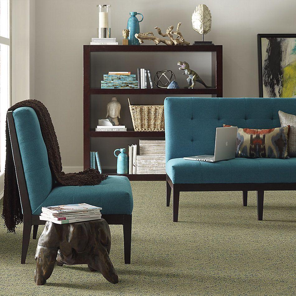 Shaw Floors Bellera Make Your Mark Net Chameleon 00302_E9792