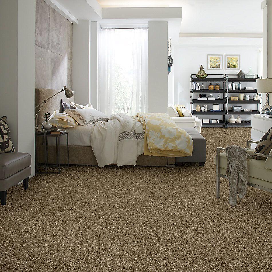 Shaw Floors SFA Corner Cafe 15′ Green Tea 00302_EA038