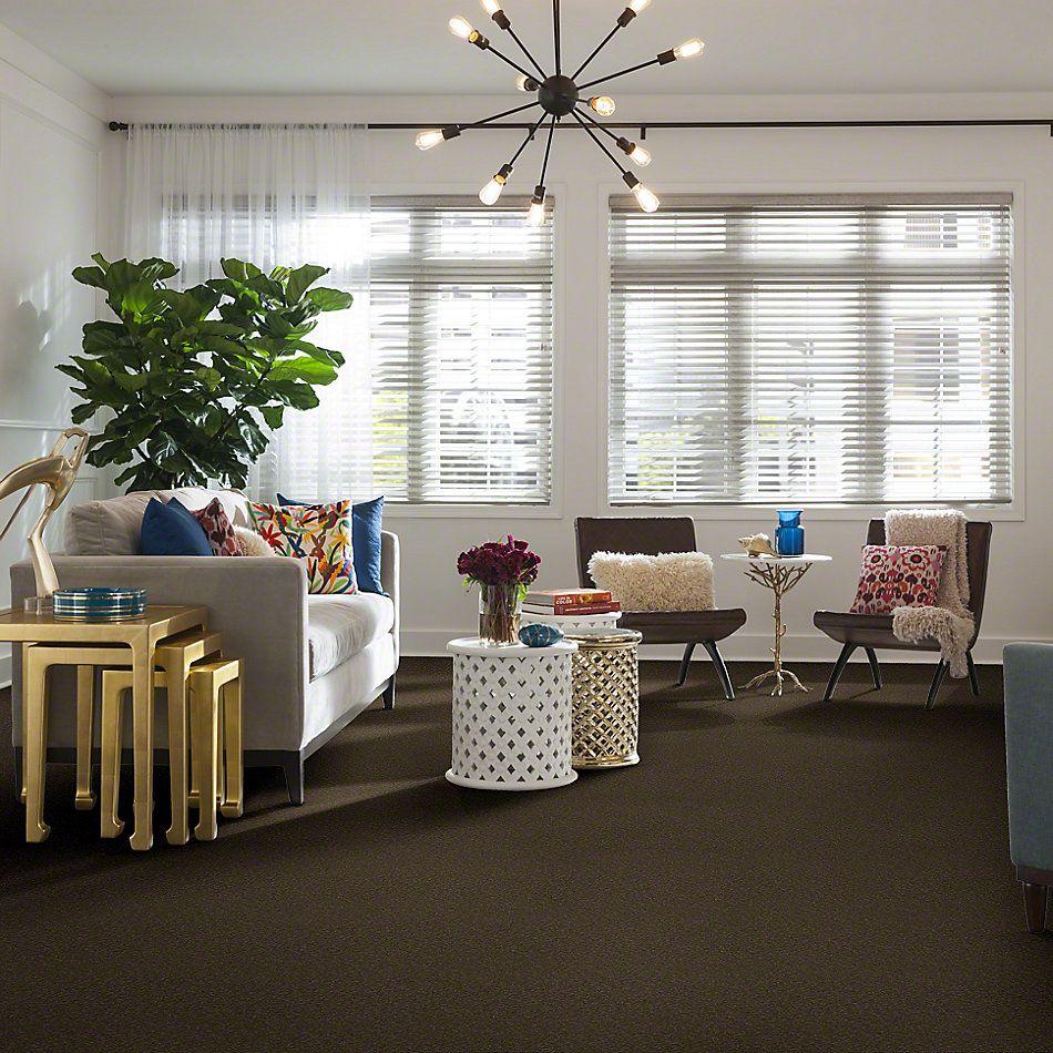 Shaw Floors Anso Premier Dealer Great Effect I 12′ Green Tea 00302_Q4327