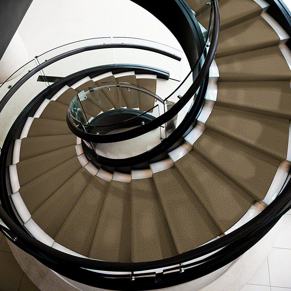 Shaw Floors Anso Premier Dealer Great Effect I 15′ Green Tea 00302_Q4328