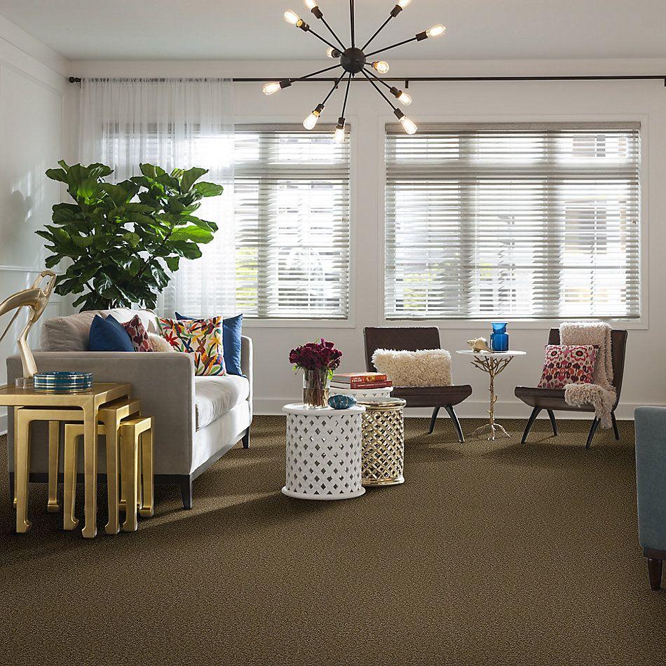 Shaw Floors Shaw Floor Studio Bright Spirit I 15′ Green Tea 00302_Q4649