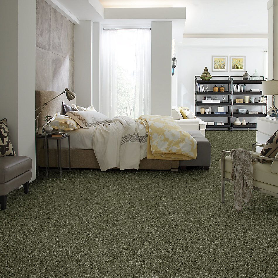 Shaw Floors Queen Harborfields I 15′ Sage Leaf 00302_Q4719