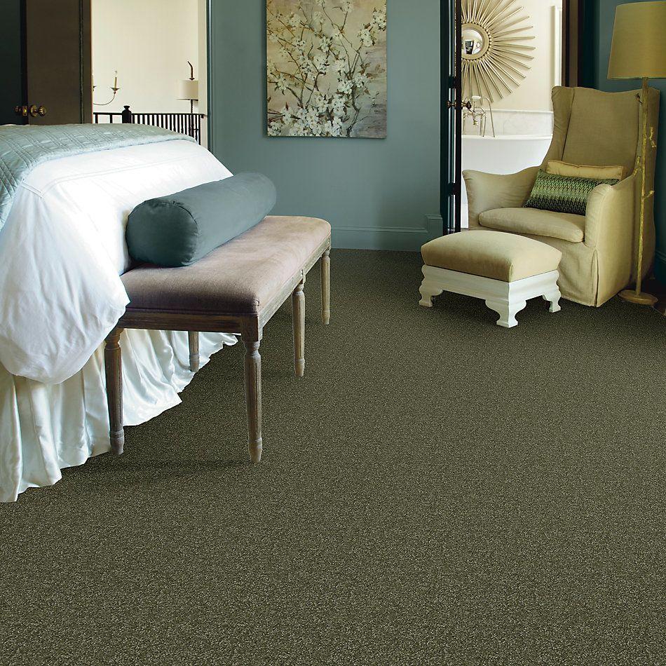 Shaw Floors Queen Harborfields III 15′ Sage Leaf 00302_Q4723