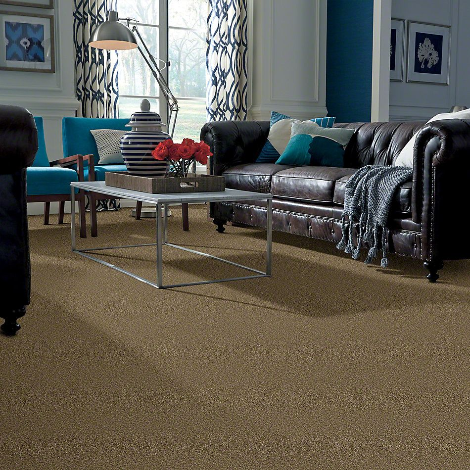 Shaw Floors Shaw Design Center Sweet Valley II 12′ Green Tea 00302_QC422
