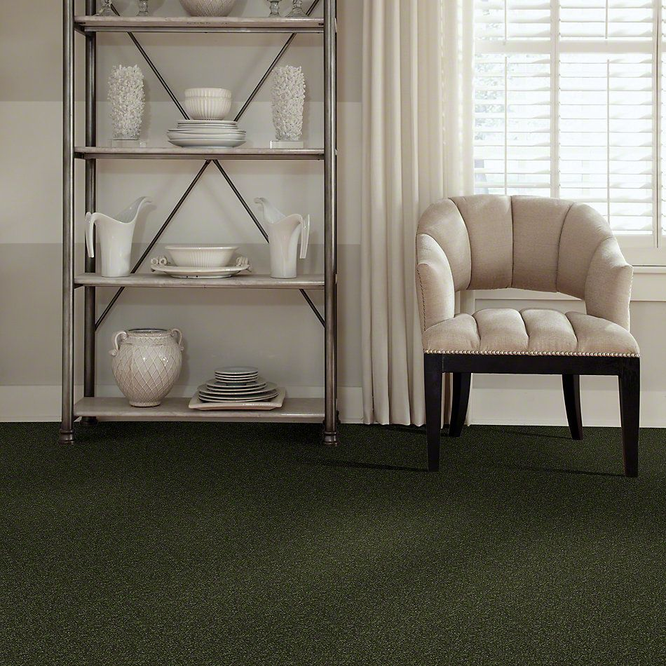 Shaw Floors SFA Enjoy The Moment I 15′ Aloe Vera 00303_0C138