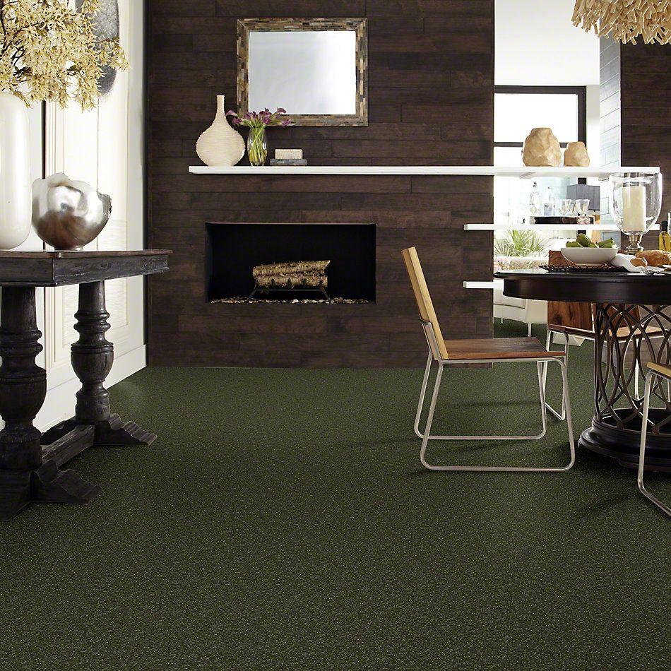 Shaw Floors SFA Enjoy The Moment II 15′ Aloe Vera 00303_0C139