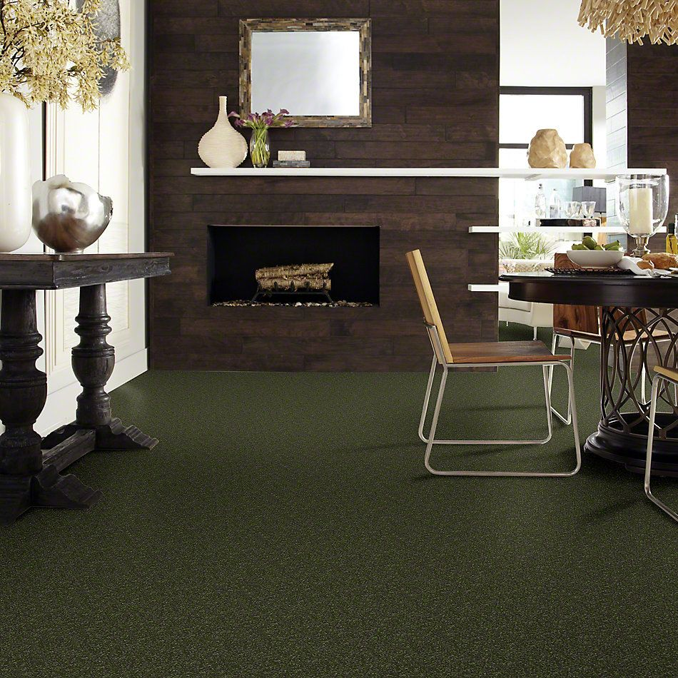 Shaw Floors SFA Enjoy The Moment III 15′ Aloe Vera 00303_0C140
