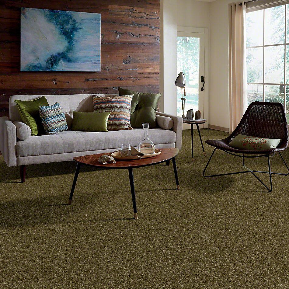 Shaw Floors Foundations Passageway II 15 Green Apple 00303_52S25
