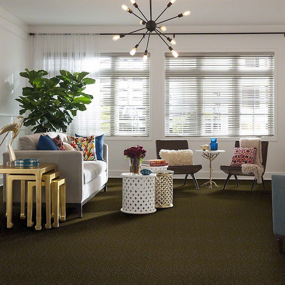 Shaw Floors Town Creek II Green Apple 00303_52S30