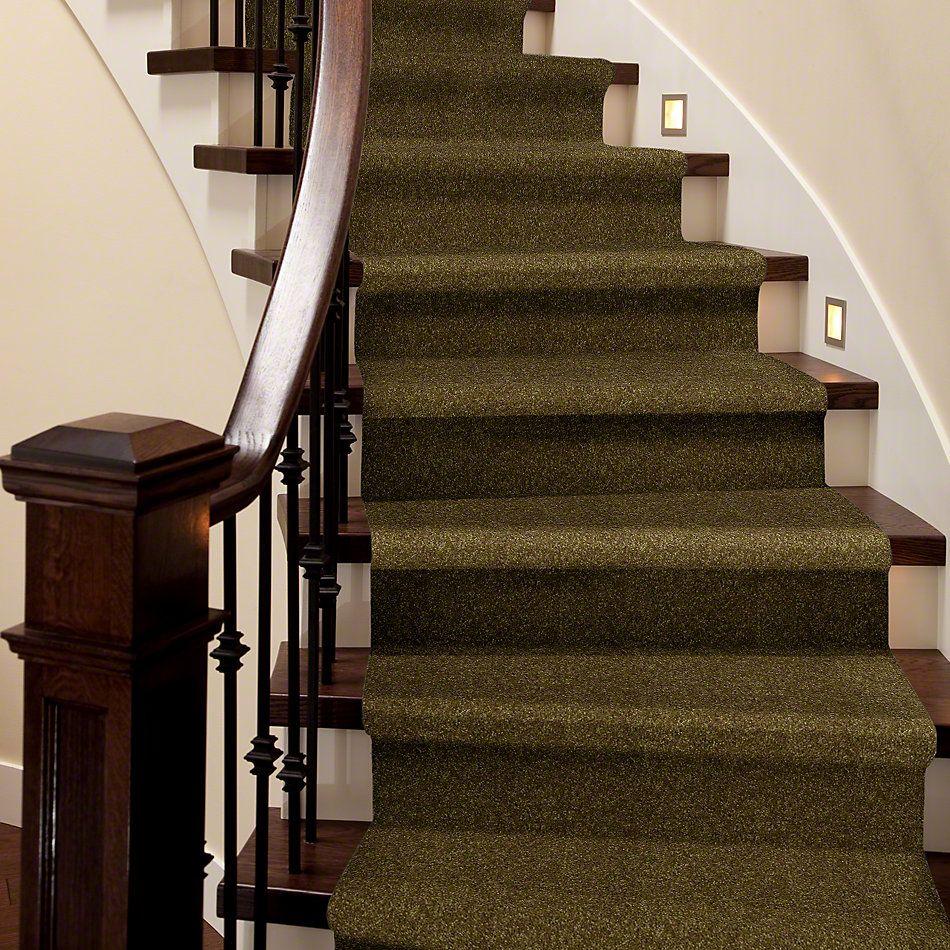 Shaw Floors Queen Versatile Design I 15′ Green Apple 00303_Q4784