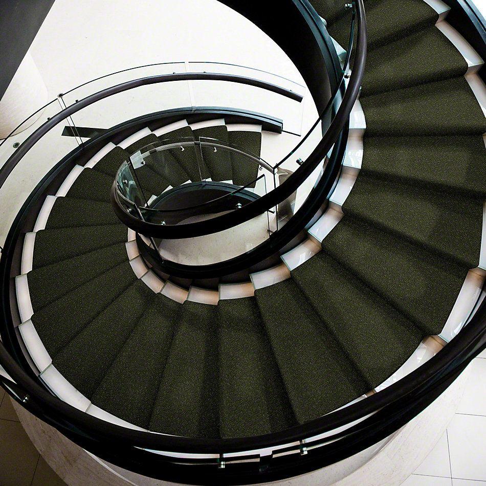 Shaw Floors Secret Escape I 15′ Passion Vine 00303_E0049
