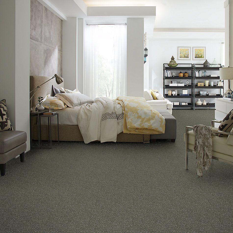 Shaw Floors Bellera Points Of Color II Net Lush 00303_E9786