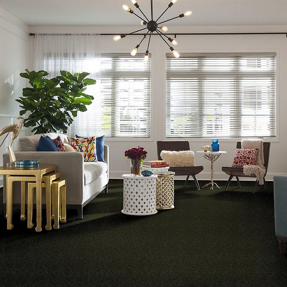 Shaw Floors Shaw Floor Studio Home News I 12′ Passion Vine 00303_FS128