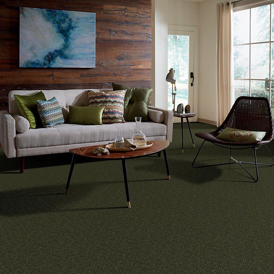 Shaw Floors Shaw Floor Studio Home News II 12′ Passion Vine 00303_FS130