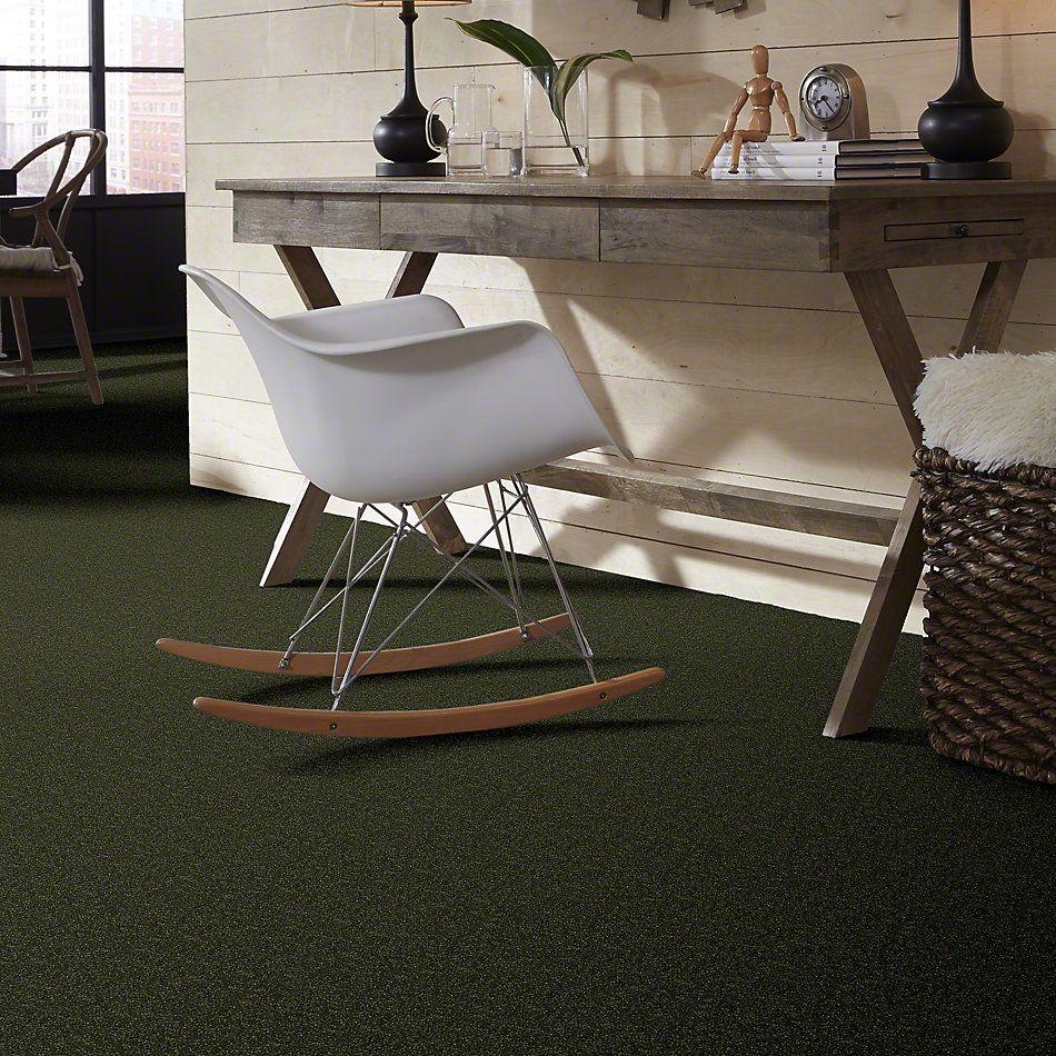 Shaw Floors Roll Special Xv407 Passion Vine 00303_XV407