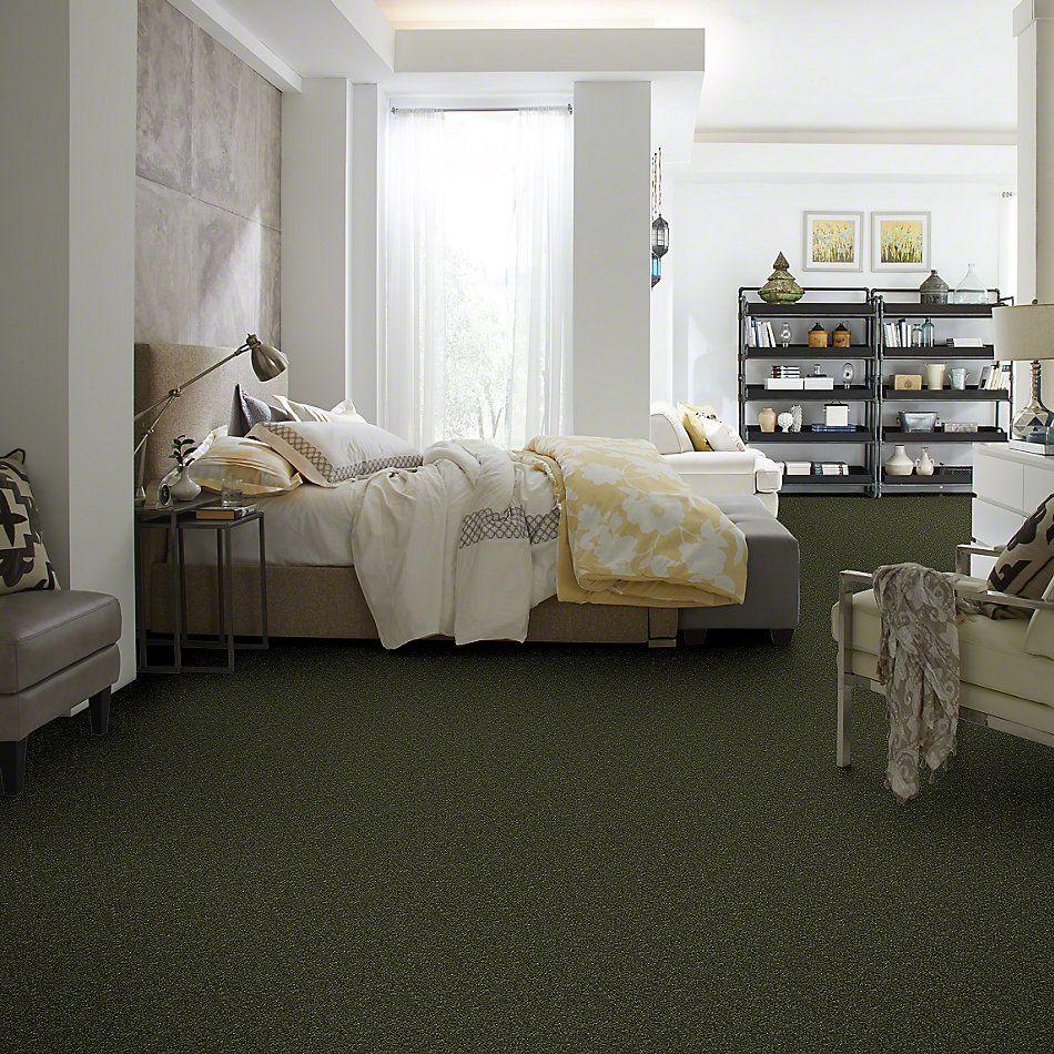 Shaw Floors Roll Special Xv409 Passion Vine 00303_XV409