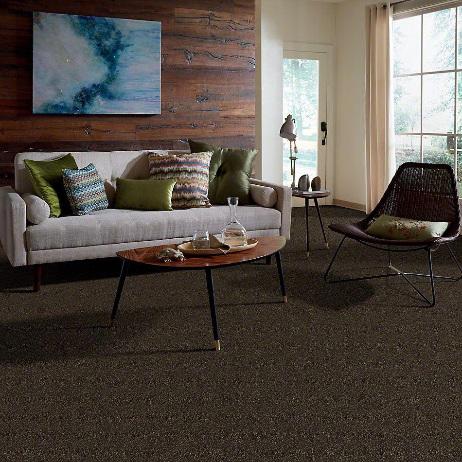 Shaw Floors SFA Enjoy The Moment II 15′ Olive Tree 00304_0C139