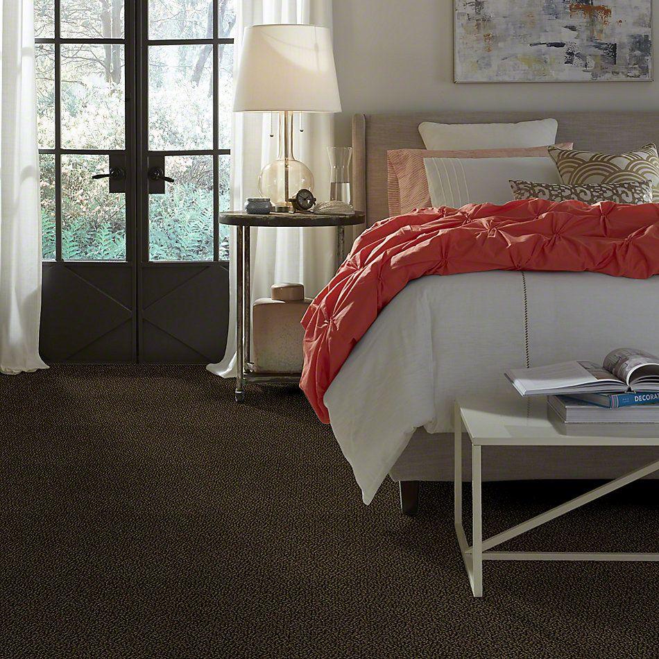 Shaw Floors Traditional Elegance Amazon 00304_52P13