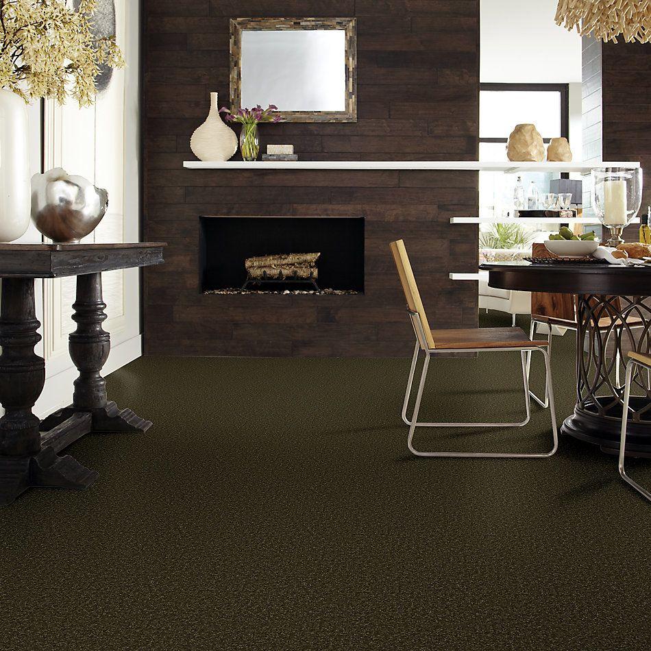 Shaw Floors Shaw Floor Studio Porto Veneri II 15′ Pine 00304_52U50